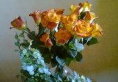 roses floues