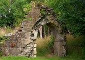 ruines en foret
