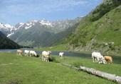 Lac d'Estaing - Htes Pyrénées