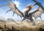 Dragon Majestueux