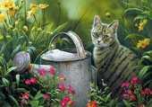 Le chat est au jardin