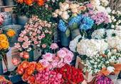 Etal d'un fleuriste