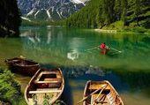 Puzzle lac vert