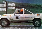 504 DANGEL  RALLY  PROTOTYPE