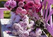 Puzzle tres belles roses
