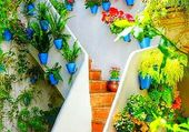 jardin pots