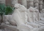 Allée des béliers à Karnak Egypte
