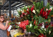 Marché aux fleurs de Pointe à Pitre