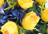 Des roses couleur soleil