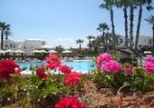 Vue sur piscine à Djerba