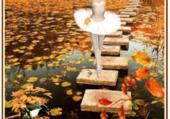 Je vous souhaite un bel automne
