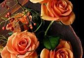 Puzzle jolies roses