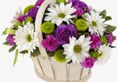 Bouquet pour les Anges