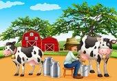 le fermier trait les vaches