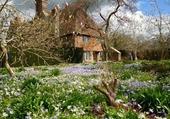 Puzzle Le cottage de Gwladys