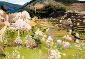 S Rusinol: Jardins en terrasse Majorque