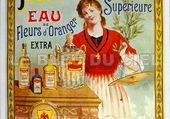 affiche huile d'olive