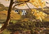 jolie village d'automne