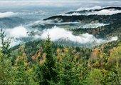 brume dans la vallee