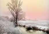 beauté d hiver