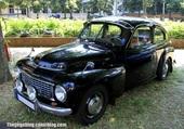 VOLVO PV 444 1956