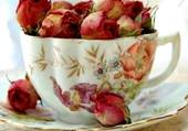 bouton de roses dans une tasse