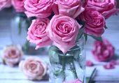 petites roses roses dans un simple bocal