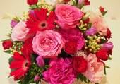 Dans les tons de rose et rouge
