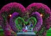 Arcades de fleurs
