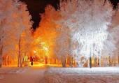 Puzzle Paysage d'hiver