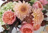 roses dahlias