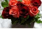 Jour calendrier fleuri