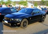 SHELBY GT 500 de 2013