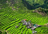 Puzzle Cultures en terrasses