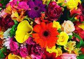 Joli bouquet très coloré