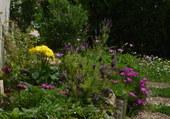 Mon jardin à Poitiers