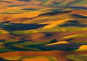 Incroyable paysage