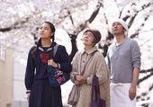 Puzzle les délices de tokyo