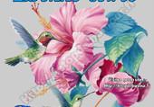 joli colibri qui butine