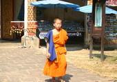 Bonzinet en THAILANDE
