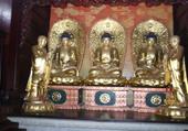 Très jolis bouddhas