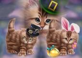 3 chatons adorable