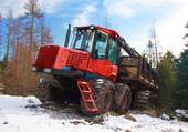 transporteur de bois