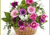 panier de belles fleurs