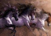 Puzzle magnifiques chevaux