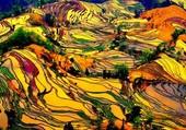 Culture au Laos