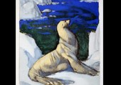 Deluermoz : Otarie blanche