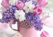tulipes narcisses lilas