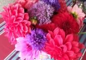 Puzzle bouquet automnal