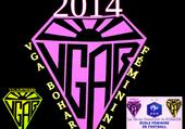 Puzzle vgab féminine logo
